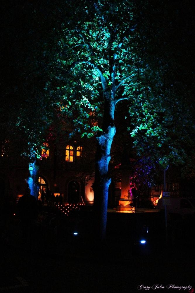 Kunstnacht Bad Wimpfen Markt