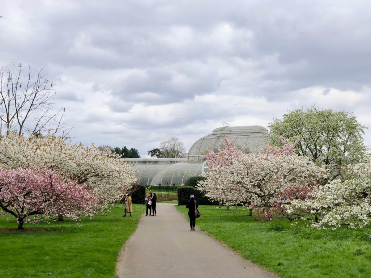 Royal Botanic Gardens London