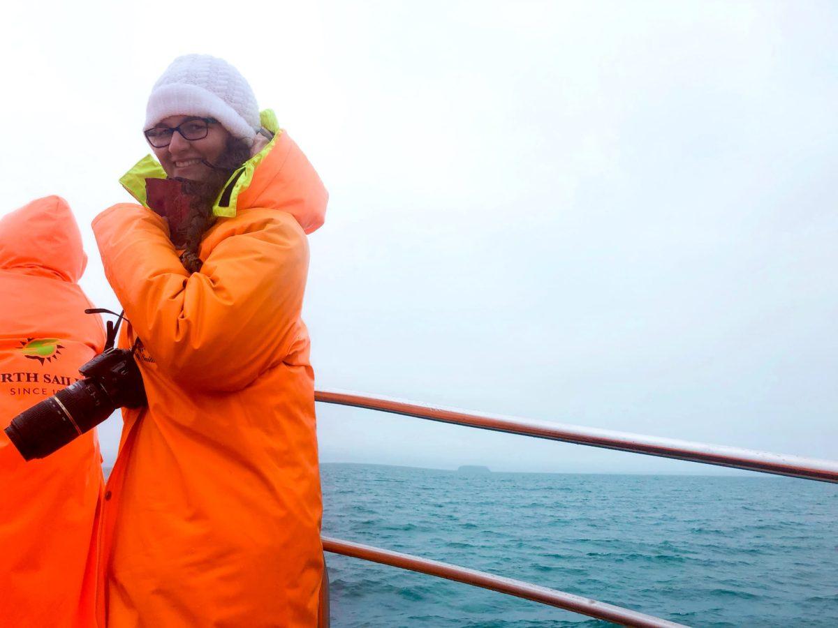 north sailing walbeobachtung in husavik